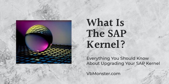 What Is The SAP Kernel is displayed on a marble background.